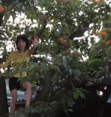 石川恵深 公式ブログ/おはよう♪ 柿の木から〜 画像1