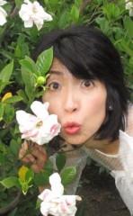 石川恵深 公式ブログ/恵深チャンちの くちなしの花…  & エミコメ!(^^)! 画像3