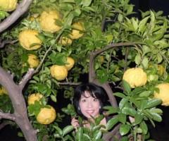 石川恵深 公式ブログ/恵深ちゃんちの☆おにゆず☆ 画像1