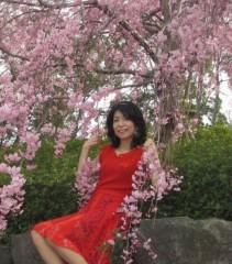 石川恵深 公式ブログ/しだれ桜&たんぽぽ 画像2