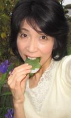 石川恵深 公式ブログ/柏餅のカシワの葉 画像2