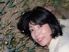 石川恵深 公式ブログ/恵深チャンちのお庭のつくし 画像1