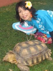 石川恵深 公式ブログ/ハワイの亀&エミコメ!(^^)! 画像2