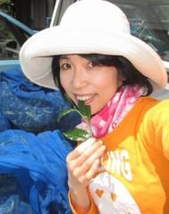 石川恵深 公式ブログ/恵深チャン 茶摘みしたよ\(^o^)/ 画像3