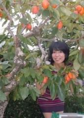 石川恵深 公式ブログ/恵深チャンちの柿 画像1