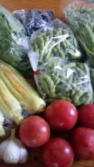 市川勝也 公式ブログ/新潟産・夏の野菜 画像1