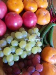 市川勝也 公式ブログ/新潟からブドウ・柿・トマト・ 画像1