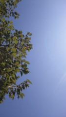 市川勝也 公式ブログ/快晴。 画像1