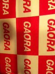 市川勝也 公式ブログ/DRAGON GATE GAORAにて生中継! 画像1