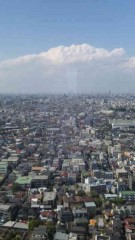 市川勝也 公式ブログ/東京タワーとスカイツリー・ 画像3