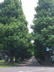 市川勝也 公式ブログ/実況5連戦のスタートは新空手。 画像2