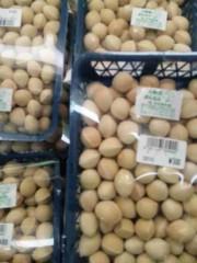 市川勝也 公式ブログ/銀杏・トマト・・秋野菜 画像1