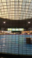 市川勝也 公式ブログ/スーパードッグカーニバル2010 。 画像2