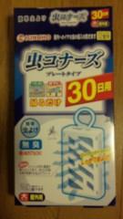市川勝也 公式ブログ/コバエ対策。 画像2