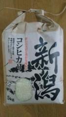 市川勝也 公式ブログ/DRAGON GATE後楽園から・・・米・山菜 画像1