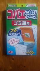 市川勝也 公式ブログ/コバエ。 画像2