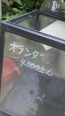 市川勝也 公式ブログ/曇り空。 画像1