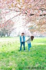 北川景子 公式ブログ/サクラの涙 画像1