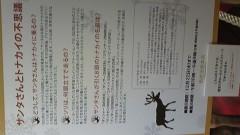 白井佐奈 公式ブログ/ わっ、でかいトナカイに遭遇!!なんとフェイクファー&発砲ス 画像2