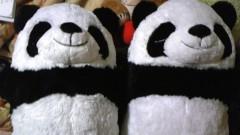 白井佐奈 公式ブログ/ 双子のぼく達♪さなちゃんちの動物園編〜★パンコ&コパンちゃ 画像1
