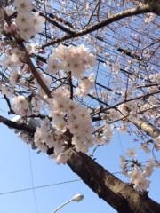 神野菜摘 公式ブログ/はるはる♩\(^o^)/ 画像1