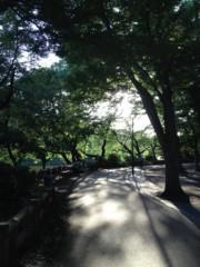 SAYUKI 公式ブログ/景色。 画像2
