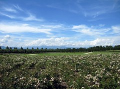 SAYUKI 公式ブログ/ヴェナリア城3 画像2