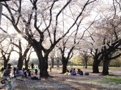 SAYUKI 公式ブログ/代々木公園 画像3