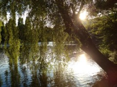 SAYUKI 公式ブログ/景色。 画像1
