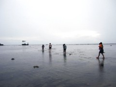 SAYUKI 公式ブログ/南の島のフローネ 画像3
