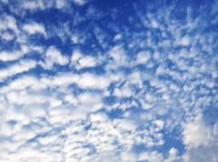 SAYUKI 公式ブログ/秋の空。 画像1