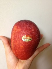SAYUKI 公式ブログ/宮古島マンゴーU+2661 画像1
