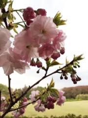 SAYUKI 公式ブログ/母と神代植物公園。 画像1
