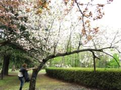 SAYUKI 公式ブログ/母とお花見2 画像3