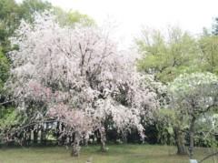 SAYUKI 公式ブログ/母と神代植物公園。 画像3