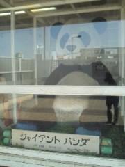 黒崎 翔晴 公式ブログ/【パンダ】 画像1
