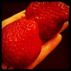 静 公式ブログ/イチゴは・・。 画像1