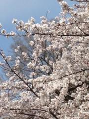 進藤学 公式ブログ/いいね… 画像1