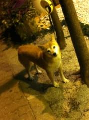 進藤学 公式ブログ/待ち犬シリーズですよ… 画像2