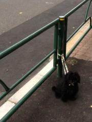 進藤学 公式ブログ/待ち犬シリーズ… 画像2