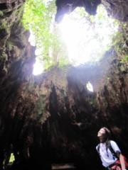 有宗麻莉子 公式ブログ/世界遺産〜自然遺産〜屋久島 画像1