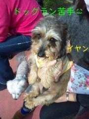 笹田道子 公式ブログ/☆サクラサクルミ☆ 画像3
