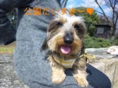 笹田道子 公式ブログ/☆サクラサクルミ☆ 画像2
