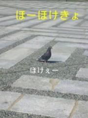 笹田道子 公式ブログ/☆ハンセンvs ハト氏☆ 画像2