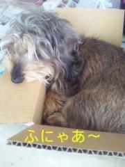 笹田道子 公式ブログ/☆手巻きアシ☆ 画像1