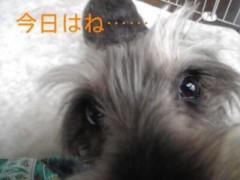 笹田道子 公式ブログ/☆愛しチャッタノヨ☆ 画像1