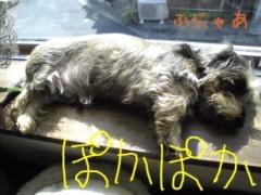 笹田道子 公式ブログ/☆わんわん物語☆ 画像2