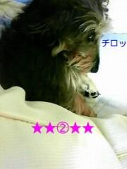 笹田道子 公式ブログ/☆たぬき犬寝入り☆ 画像2