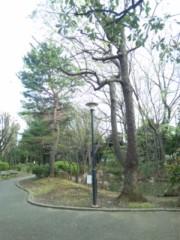 笹田道子 公式ブログ/☆ジャングル発見☆ 画像1