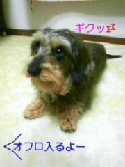 笹田道子 公式ブログ/☆飼い主=飼い犬?☆ 画像1